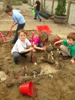 Blue Oak Kindergarten Sandbox
