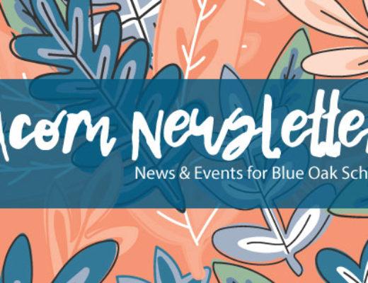 Acorn Newsletter 5/19/17