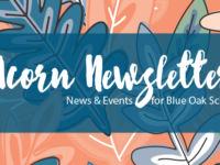 Acorn Newsletter – 11/3/17